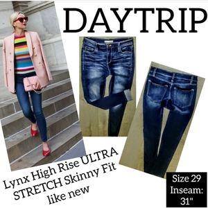 Daytrip Jeans Size 29 High Rise Skinny Leg Lynx